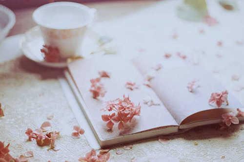 唯美:幸福的人生,就是对那一份平淡生活的执着坚守