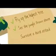 励志:苍蝇的一分钟生命 中文字幕 — 音乐短片