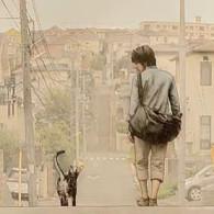 治愈系:日系催泪短片《你和我 キミとボク》漫画家与星空猫的浪漫邂逅猫奴必看!