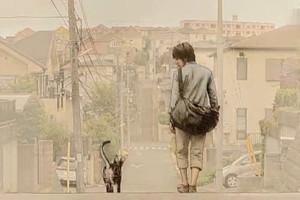 治愈系:日系催泪短片《你和我 キミとボク》