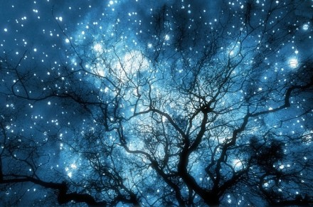 意境唯美:蓝色的夜空